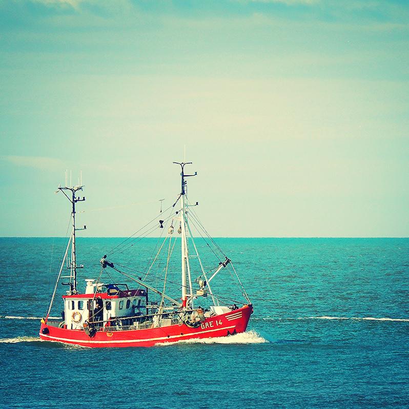 shipspot